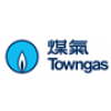 The Hong Kong And China Gas Co Ltd